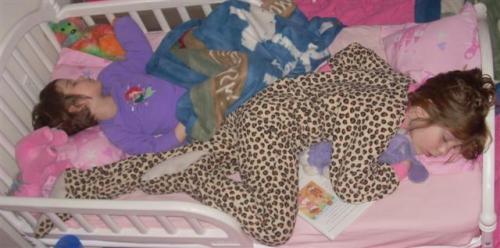 sally susan toddler bed